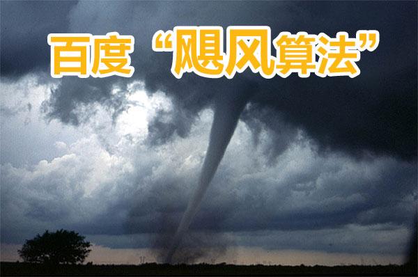 飓风算法详解及应对策略